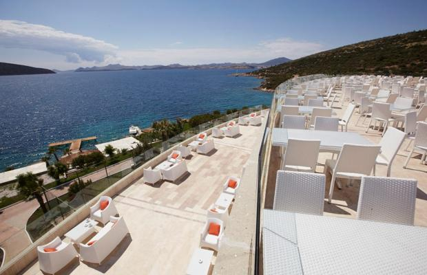 фотографии отеля Bodrum Holiday Resort & Spa (ex. Majesty Club Hotel Belizia) изображение №11