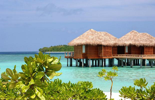 фотографии отеля Sheraton Maldives Full Moon Resort & Spa изображение №39