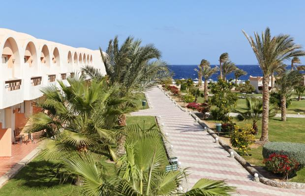 фотографии The Three Corners Sea Beach Resort (ex. Holiday Beach Resort Marsa Alam) изображение №32