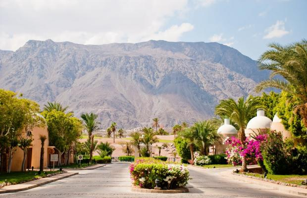 фото Miramar Resort Taba Heights (ex. Hyatt Regency Taba Heights) изображение №38