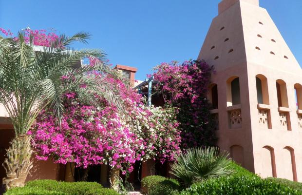 фотографии отеля Miramar Resort Taba Heights (ex. Hyatt Regency Taba Heights) изображение №15