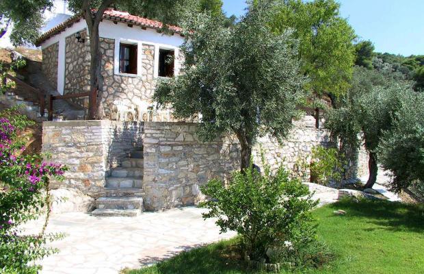 фотографии Villa Ariadni изображение №28