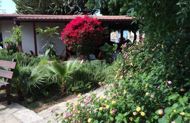 фотографии отеля Dionysos Central Hotel изображение №3
