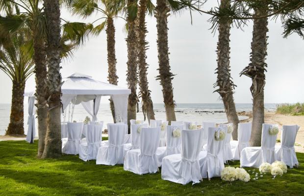 фото отеля Louis Phaethon Beach изображение №9