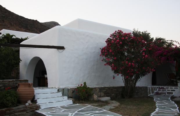фотографии отеля Petra Holiday Village изображение №31