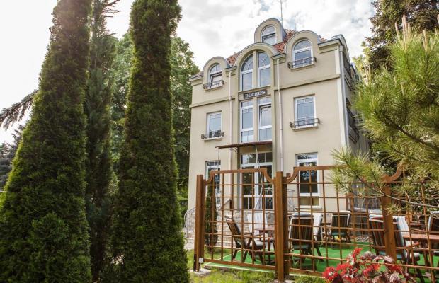 фотографии отеля Hotel Duchess изображение №15