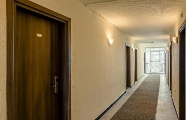фотографии отеля Svezhest (Свежесть) изображение №7