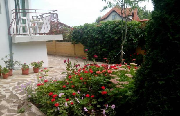 фото отеля Niko (Нико) изображение №5