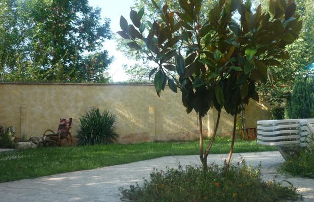 фотографии отеля Veronika (Вероника) изображение №3