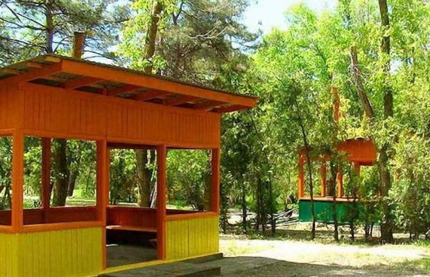 фотографии отеля ДОЛ Черноморец (Chernomorec) изображение №15
