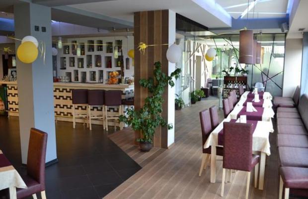 фотографии Elate Plaza Business Hotel изображение №20