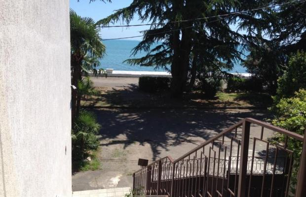фото отеля Диоскурия (Dioskuriya) изображение №45