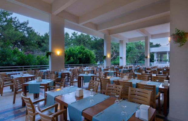 фотографии отеля Tac'un Nisa Resort Tekirova (ex. Larissa Club Saphire; Jeans Club Hotels Saphire) изображение №31