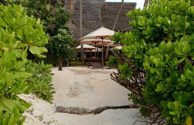 фотографии Azanzi Beach изображение №8