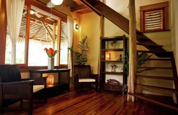 фото Copa De Arbol Beach & Rainforest Resort изображение №10