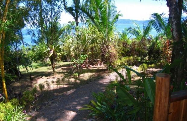 фото отеля Copa De Arbol Beach & Rainforest Resort изображение №5
