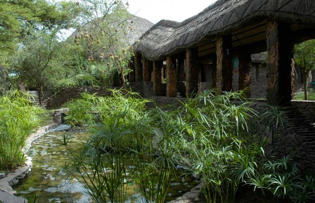 фотографии отеля Serengeti Serena Safari Lodge изображение №3