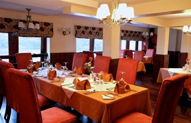 фотографии отеля Treetops изображение №11