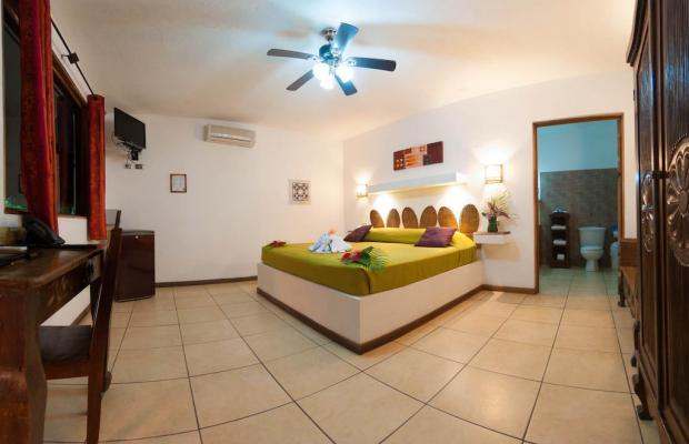фотографии отеля Cariblue Beach and Jungle Resort изображение №71