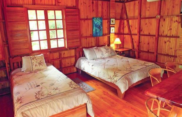 фото отеля Ciudad Perdida Ecolodge изображение №13