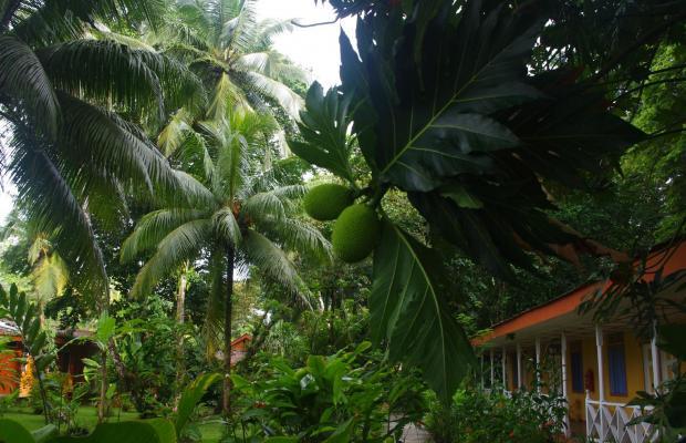 фото отеля La Baula Lodge изображение №9