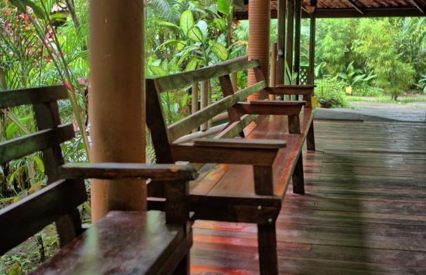 фотографии Pachira Lodge изображение №16