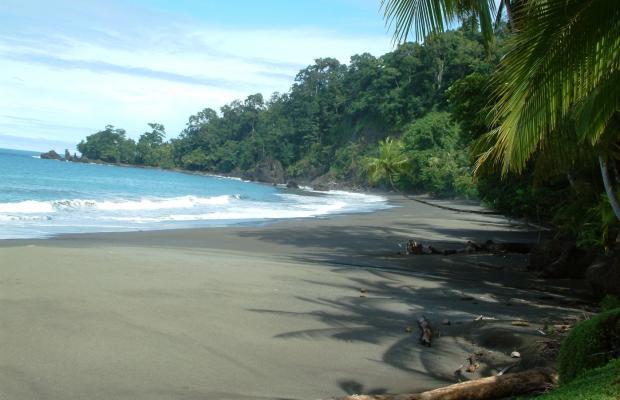 фото Casa Corcovado Jungle Lodge изображение №102