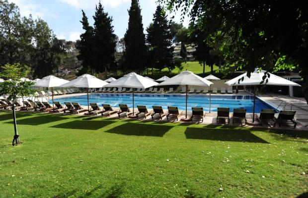 фотографии отеля Carmel Forest Spa Resort by Isrotel Exclusive Collection изображение №39