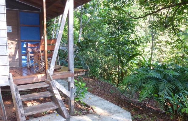фотографии Suital Lodge изображение №16