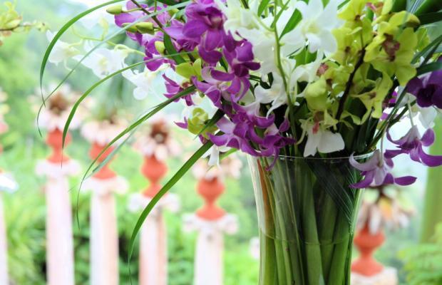 фотографии Villa Caletas изображение №4