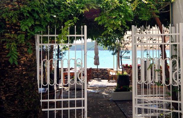 фотографии Dolce Vita Apartments изображение №12