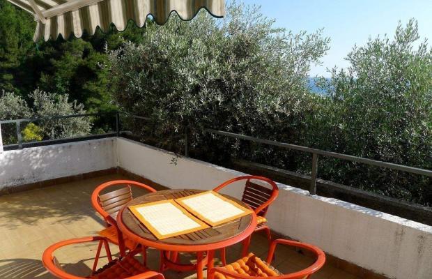 фото отеля Apartments Maslina изображение №13