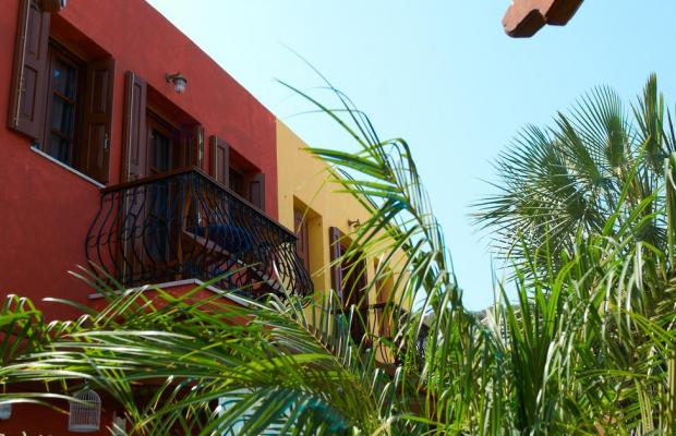 фотографии Iapetos Village изображение №12