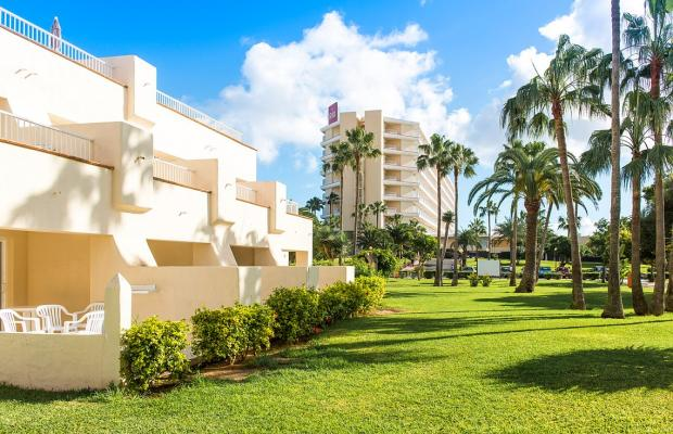 фотографии ClubHotel Riu Oliva Beach Resort изображение №12