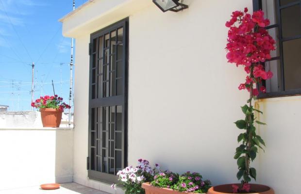 фото отеля Olive Tree Hostel изображение №21