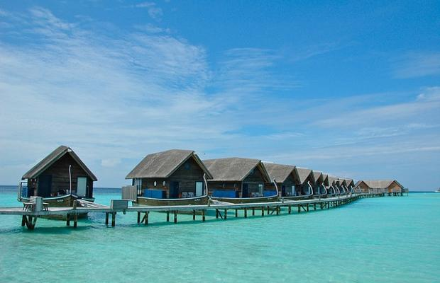 фотографии отеля Dhoni Island Resort (ex.Dhoni Mighili) изображение №19
