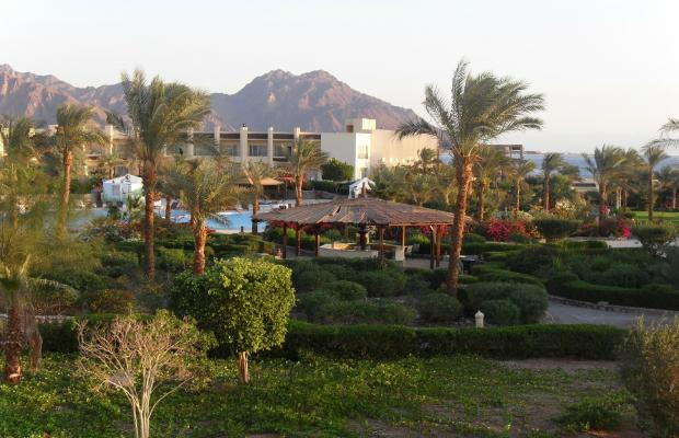 фото Dessole Holiday Taba Resort (ех. Holiday Resort Taba) изображение №14