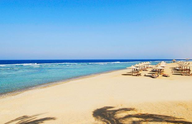 фотографии Nada Marsa Alam Resort (ex. Creative Al-Nada Resort) изображение №12