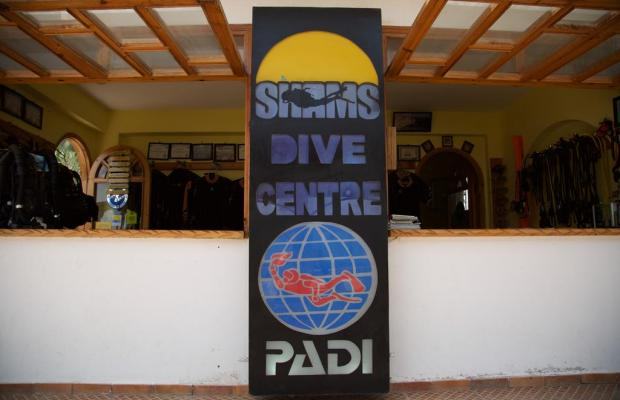 фотографии Shams Hotel & Dive Centre изображение №4