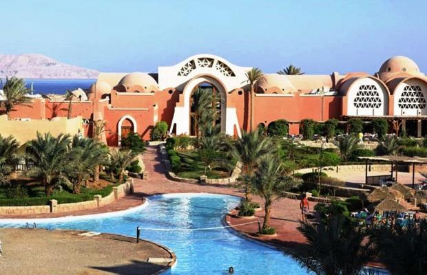 фотографии Palmyra Resort (ех. Three Corners Palmyra Resort; Amar El Zaman) изображение №28