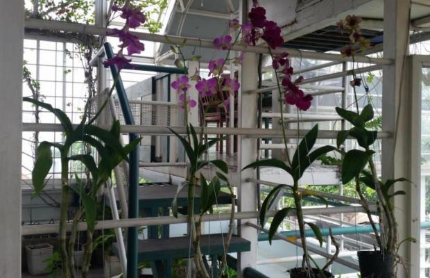фото Minh Chau Hotel изображение №26