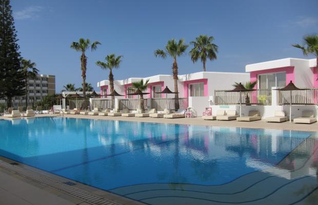 фотографии Napa Mermaid Hotel & Suites изображение №4