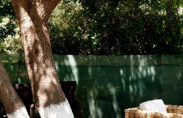 фото Aphrodite Hotel & Suites изображение №54