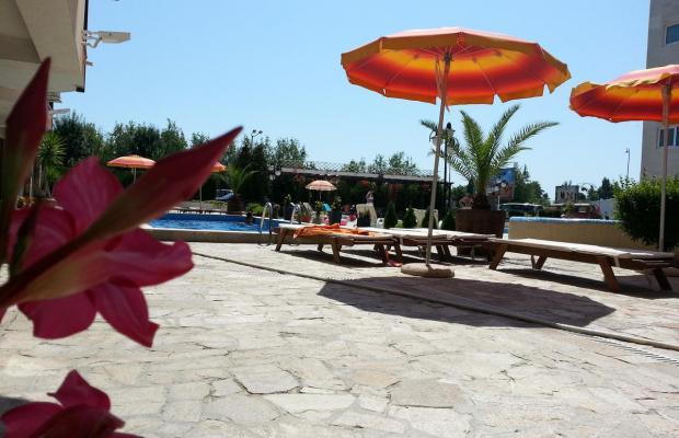 фотографии отеля Sea Regal (Сий Регал) изображение №39