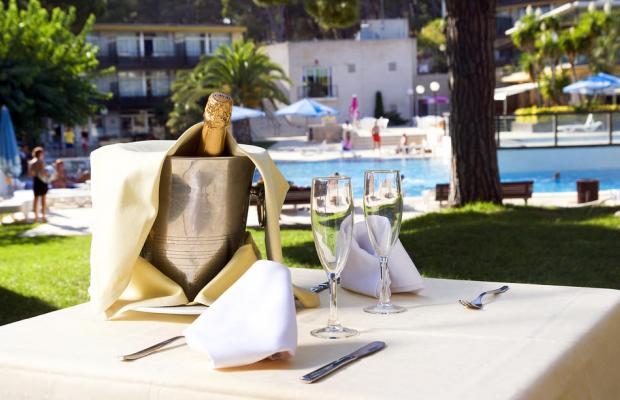 фотографии отеля Comtat Sant Jordi изображение №19