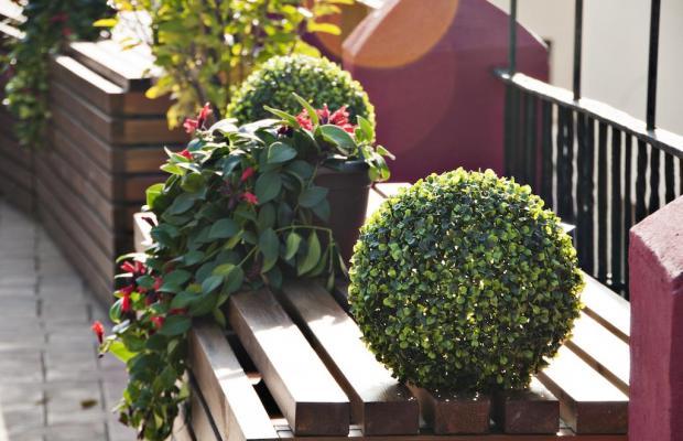 фотографии отеля Callejon del Agua изображение №19
