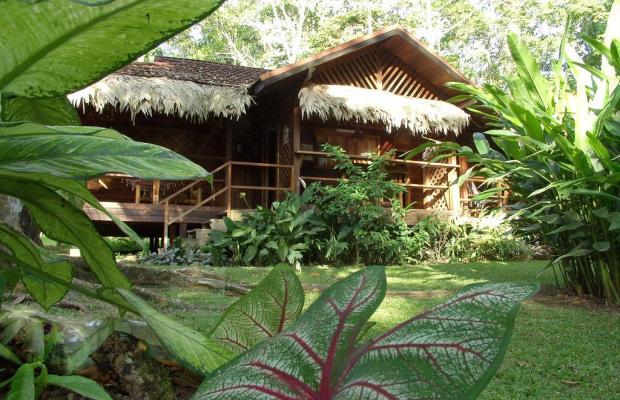 фотографии отеля Cariblue Beach and Jungle Resort изображение №75