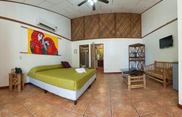 фото Cariblue Beach and Jungle Resort изображение №70