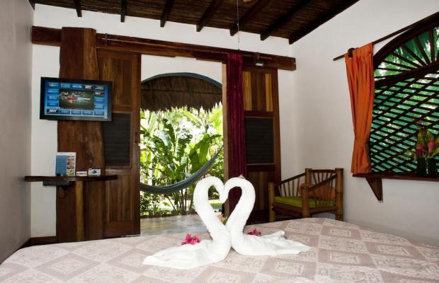 фотографии отеля Cariblue Beach and Jungle Resort изображение №39