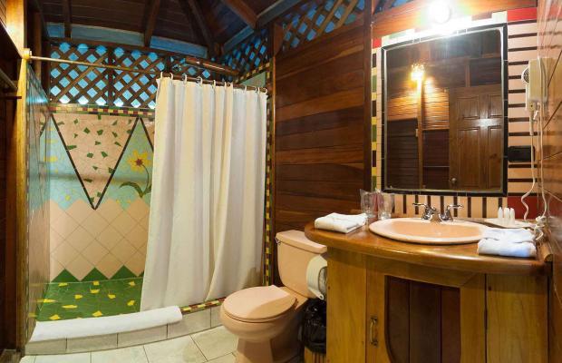 фото отеля Cariblue Beach and Jungle Resort изображение №29